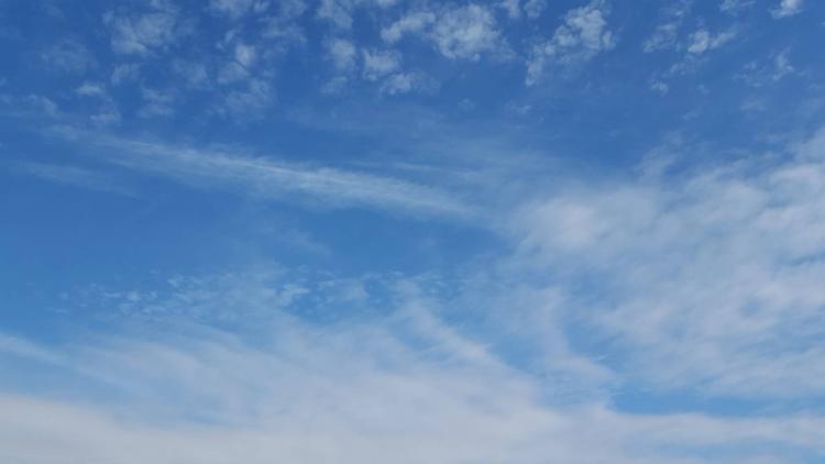 胸に広がる青空のたまご