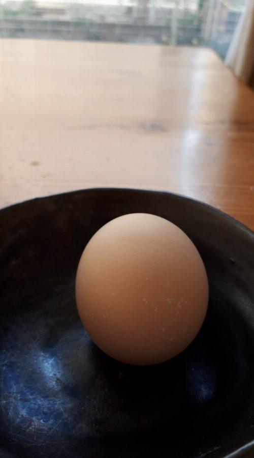 コロンブスの卵?